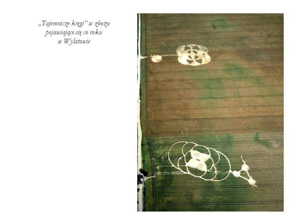 Tajemnicze kręgi w zbożu pojawiające się co roku w Wylatowie