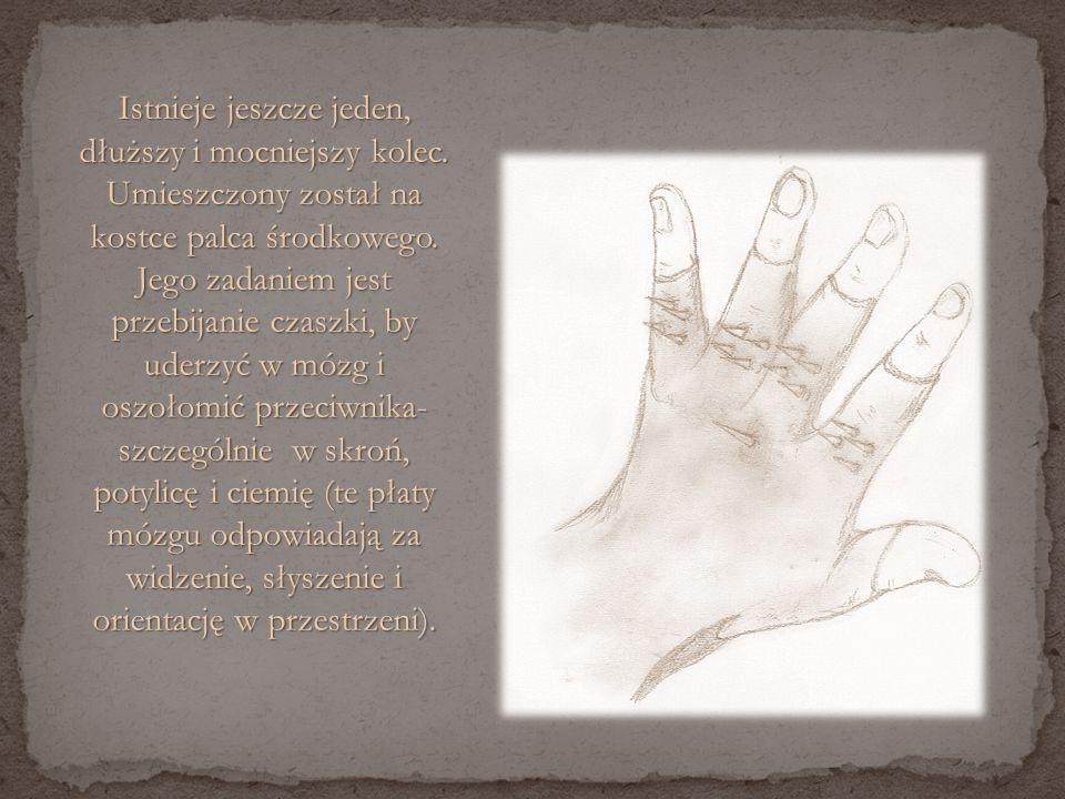Od wewnątrz rękawica posiada uproszczony znak Bractwa, który ułożony jest wzdłuż zgięć dłoni.