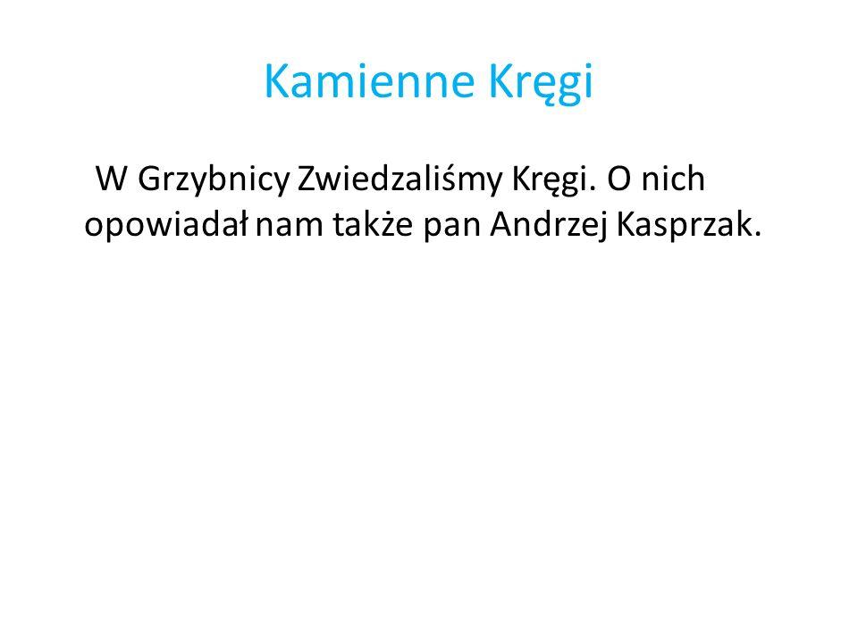 Kamienne Kręgi W Grzybnicy Zwiedzaliśmy Kręgi. O nich opowiadał nam także pan Andrzej Kasprzak.