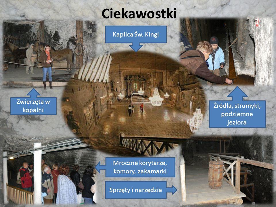 Ciekawostki Zwierzęta w kopalni Źródła, strumyki, podziemne jeziora Kaplica Św. Kingi Mroczne korytarze, komory, zakamarki Sprzęty i narzędzia