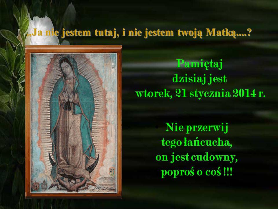 3. Panna ś wi ę ta posiada wst ąż k ę na brzuchu, ona jest w ci ąż y, pokazuj ą c tym, ż e Pan Bóg chce aby Jezus urodzi ł si ę w Ameryce, w sercu ka