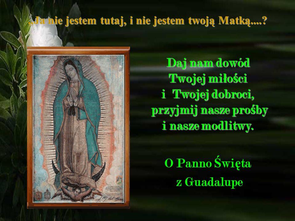 Ja nie jestem tutaj, i nie jestem twoją Matką....? List do Matki Bo ż ej z Guadalupe: b ł agam Ciebie w imieniu wszystkich ludzi ś wiata, pob ł ogos ł