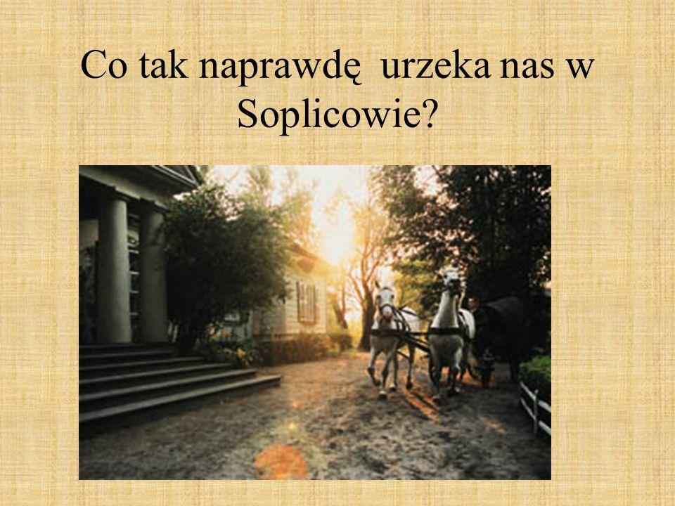 Co tak naprawdę urzeka nas w Soplicowie?