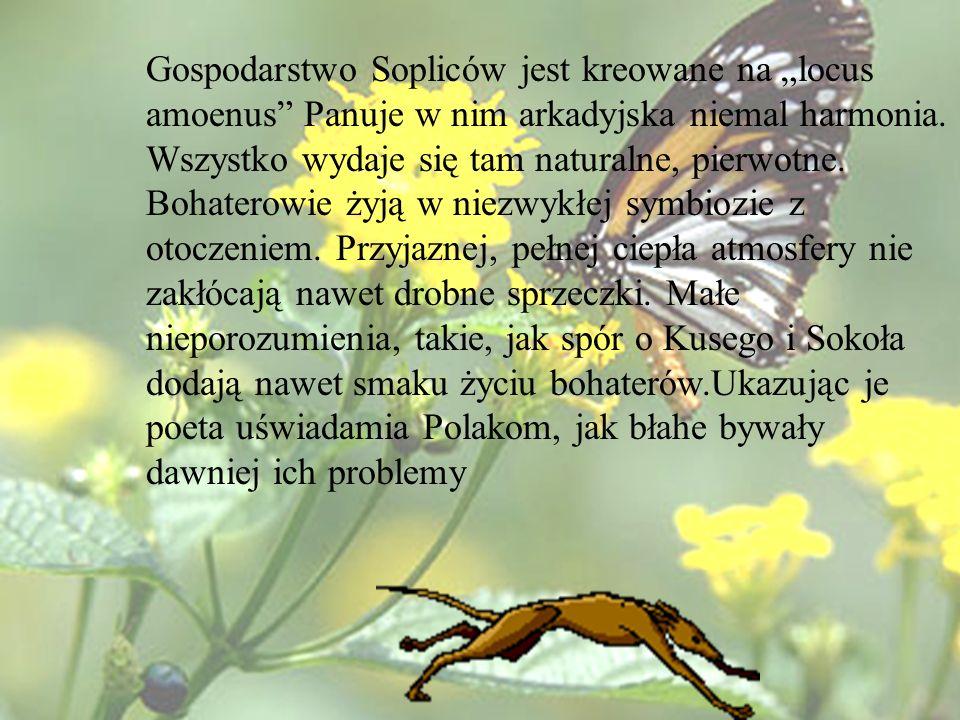 Gospodarstwo Sopliców jest kreowane na locus amoenus Panuje w nim arkadyjska niemal harmonia. Wszystko wydaje się tam naturalne, pierwotne. Bohaterowi