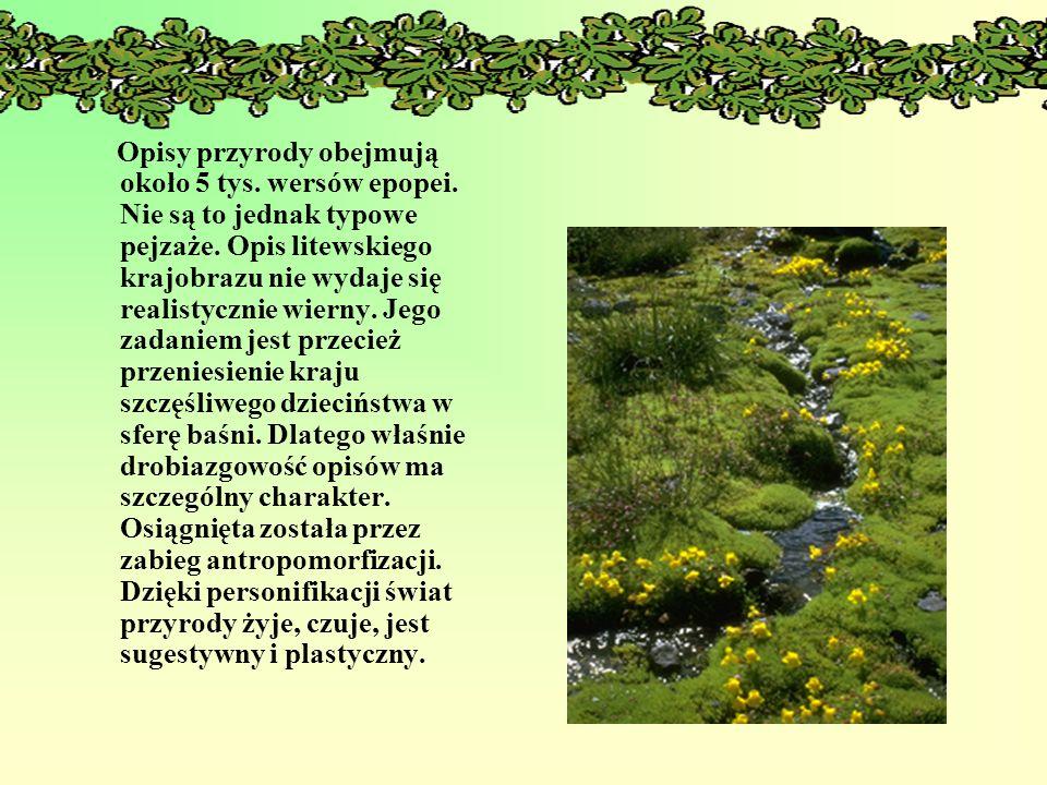 Opisy przyrody obejmują około 5 tys. wersów epopei. Nie są to jednak typowe pejzaże. Opis litewskiego krajobrazu nie wydaje się realistycznie wierny.