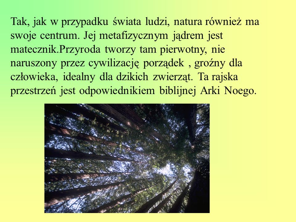 Tak, jak w przypadku świata ludzi, natura również ma swoje centrum. Jej metafizycznym jądrem jest matecznik.Przyroda tworzy tam pierwotny, nie naruszo
