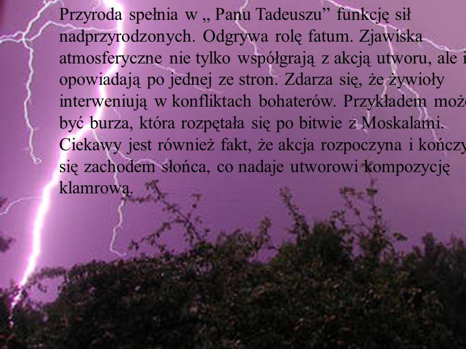 Przyroda spełnia w Panu Tadeuszu funkcję sił nadprzyrodzonych. Odgrywa rolę fatum. Zjawiska atmosferyczne nie tylko współgrają z akcją utworu, ale i o