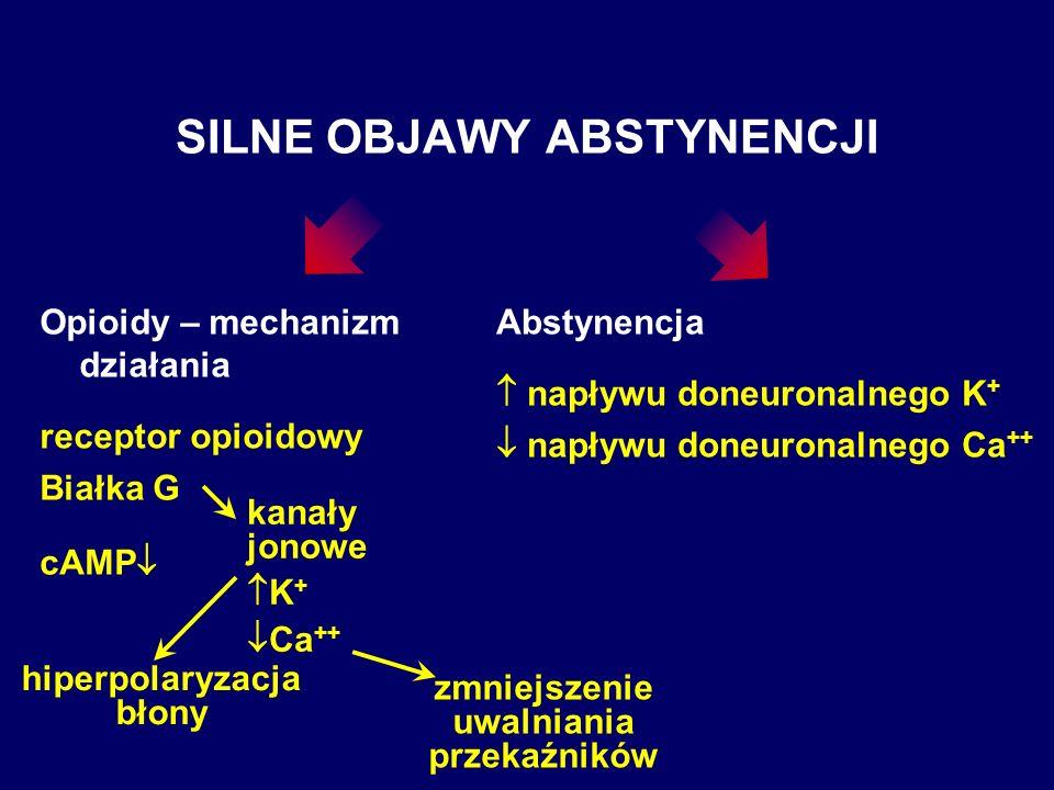 SILNE OBJAWY ABSTYNENCJI Opioidy – mechanizm działania receptor opioidowy Białka G cAMP kanały jonowe K + Ca ++ hiperpolaryzacja błony zmniejszenie uw