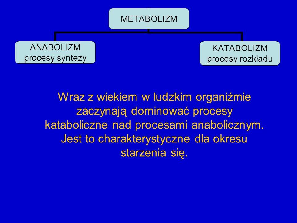 METABOLIZM ANABOLIZM procesy syntezy KATABOLIZM procesy rozkładu Wraz z wiekiem w ludzkim organiźmie zaczynają dominować procesy kataboliczne nad proc