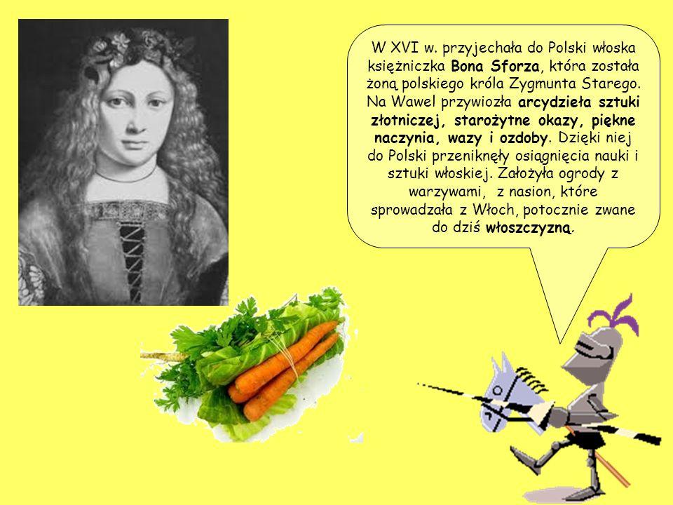 W XVI w. przyjechała do Polski włoska księżniczka Bona Sforza, która została żoną polskiego króla Zygmunta Starego. Na Wawel przywiozła arcydzieła szt