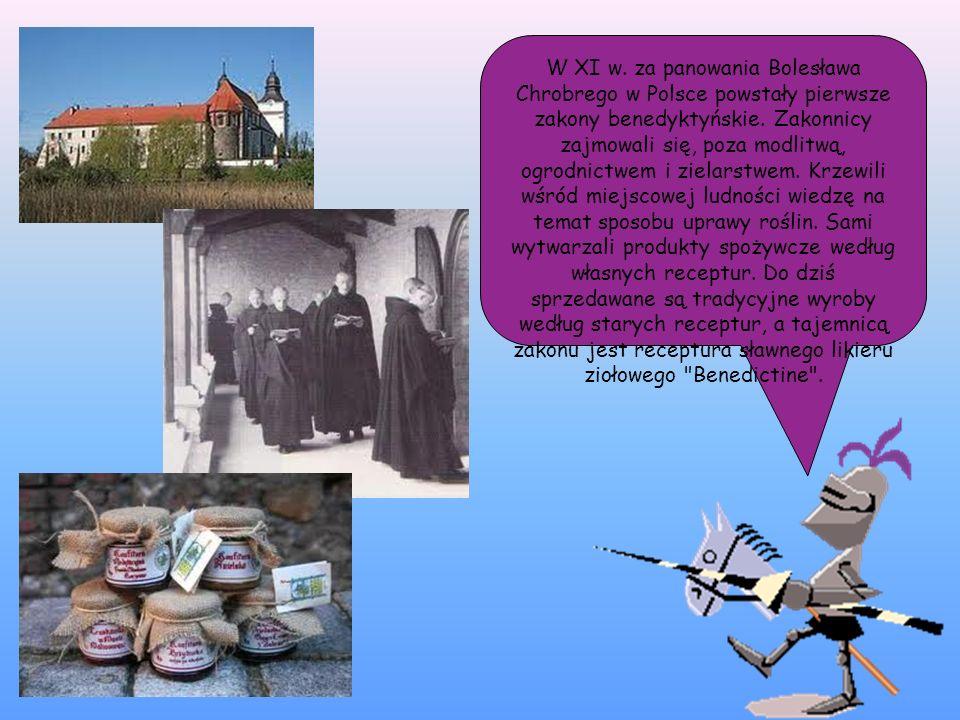 W XI w. za panowania Bolesława Chrobrego w Polsce powstały pierwsze zakony benedyktyńskie. Zakonnicy zajmowali się, poza modlitwą, ogrodnictwem i ziel