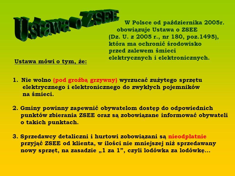 W Polsce od października 2005r. obowiązuje Ustawa o ZSEE (Dz. U. z 2005 r., nr 180, poz.1495), która ma ochronić środowisko przed zalewem śmieci elekt