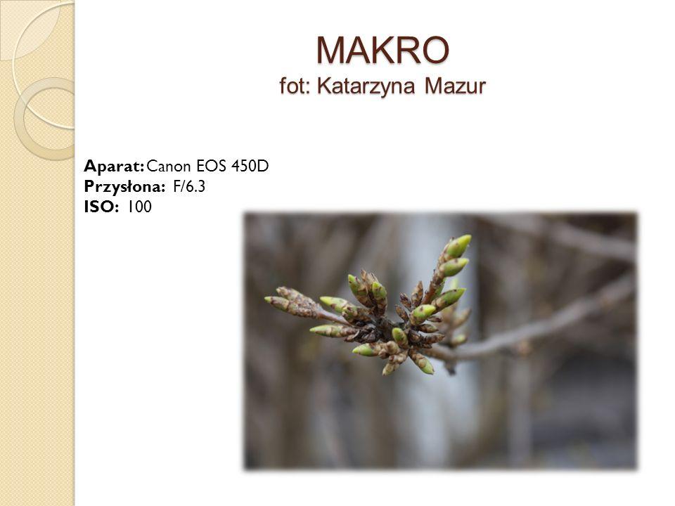 MAKRO fot: Katarzyna Mazur Aparat: Canon EOS 450D Przysłona: F/6.3 ISO: 100