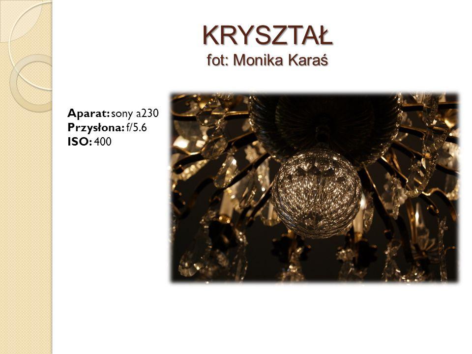 KRYSZTAŁ fot: Monika Karaś Aparat: sony a230 Przysłona: f/5.6 ISO: 400