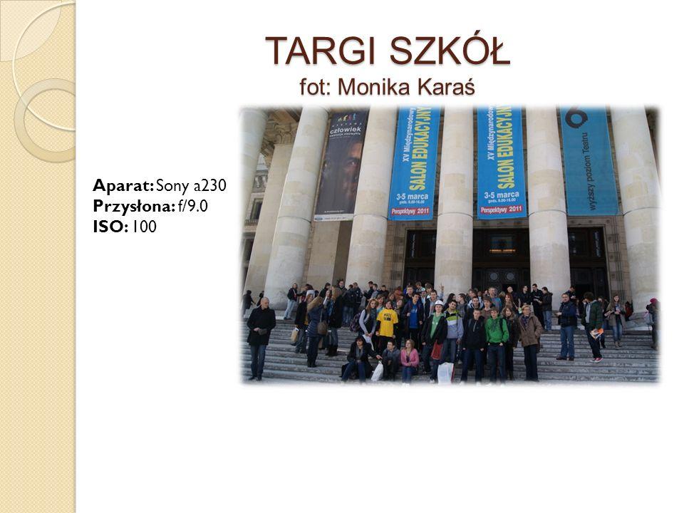 TARGI SZKÓŁ fot: Monika Karaś Aparat: Sony a230 Przysłona: f/9.0 ISO: 100