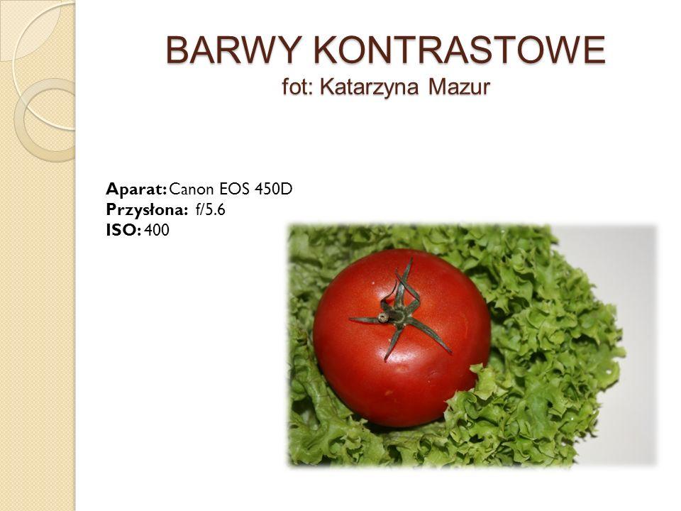 BARWY KONTRASTOWE fot: Katarzyna Mazur Aparat: Canon EOS 450D Przysłona: f/5.6 ISO: 400