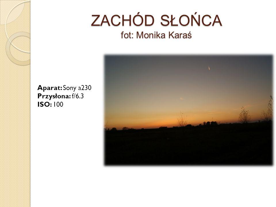 ZACHÓD SŁOŃCA fot: Monika Karaś Aparat: Sony a230 Przysłona: f/6.3 ISO: 100