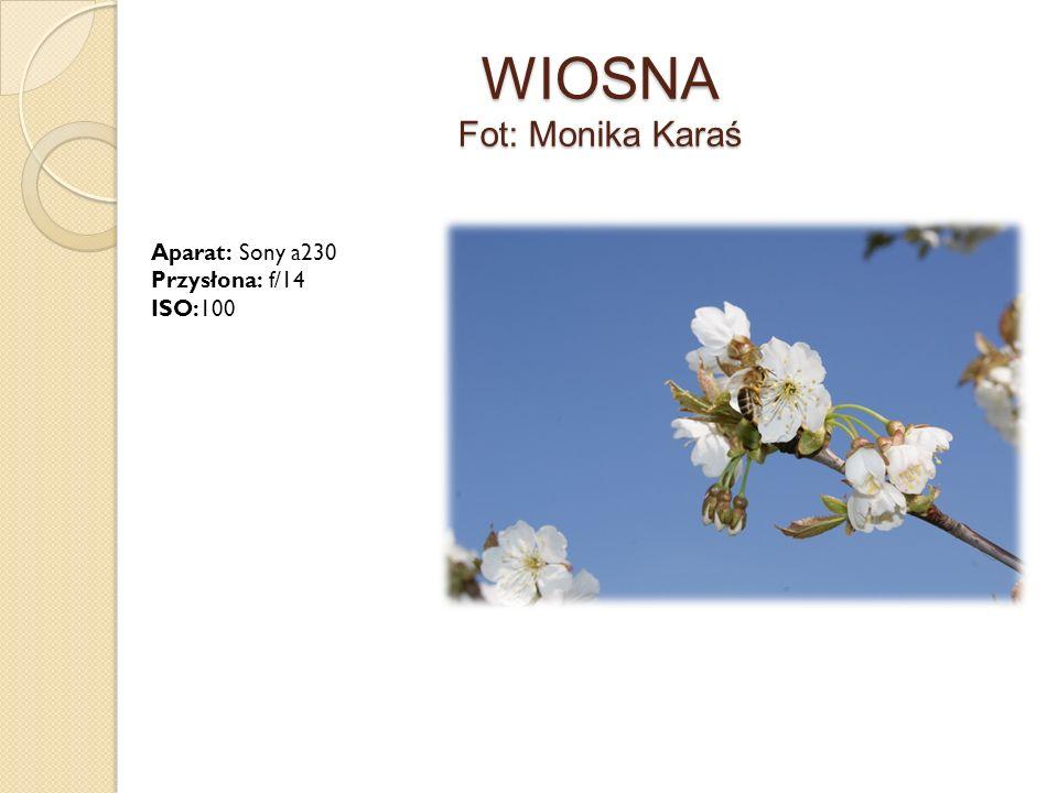 WIOSNA Fot: Monika Karaś Aparat: Sony a230 Przysłona: f/14 ISO:100