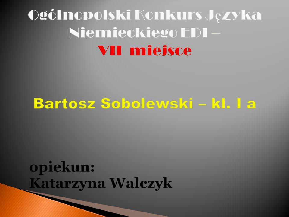 opiekun: Katarzyna Walczyk