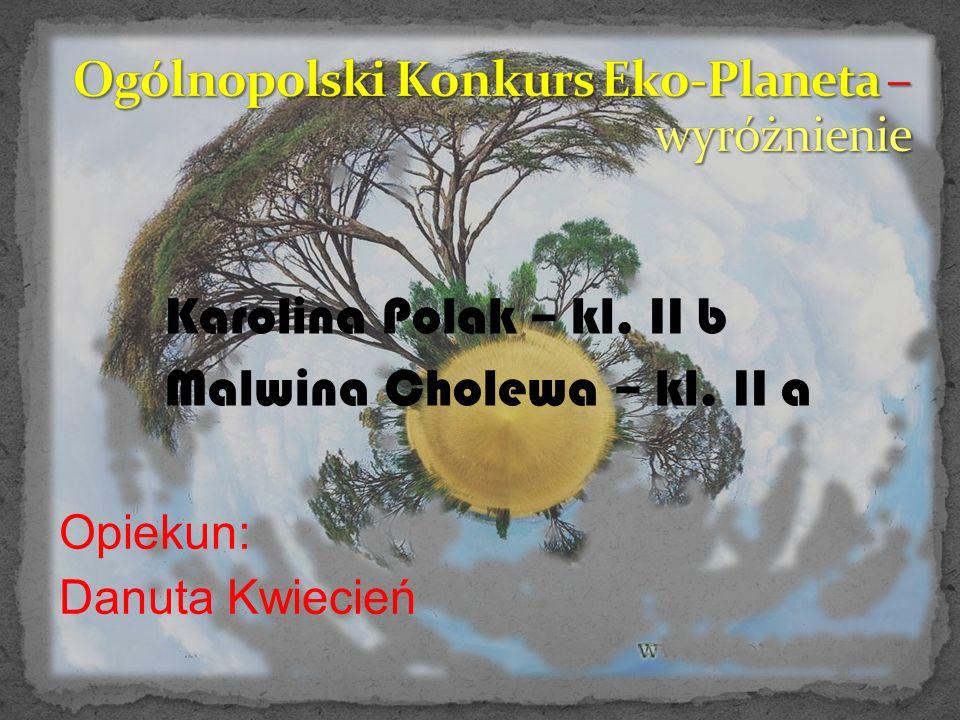 Karolina Polak – kl. II b Malwina Cholewa – kl. II a Opiekun: Danuta Kwiecień