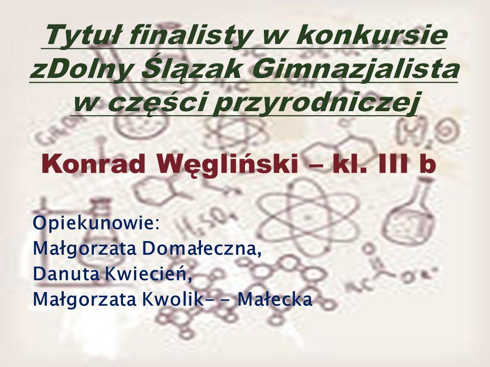 Konrad Węgliński – kl. III b Opiekunowie: Małgorzata Domałeczna, Danuta Kwiecień, Małgorzata Kwolik- - Małecka