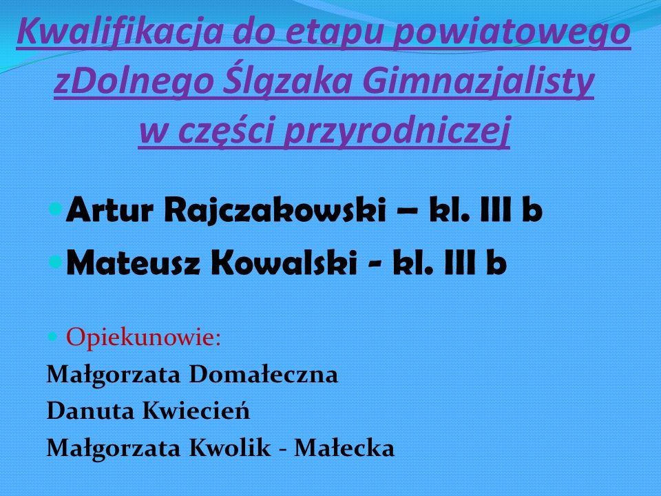 Opiekunowie: Małgorzata Domałeczna Danuta Kwiecień Małgorzata Kwolik - Małecka Kwalifikacja do etapu powiatowego zDolnego Ślązaka Gimnazjalisty w częś