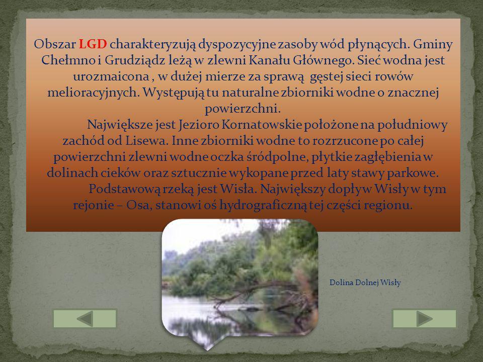 Obszar LGD charakteryzują dyspozycyjne zasoby wód płynących. Gminy Chełmno i Grudziądz leżą w zlewni Kanału Głównego. Sieć wodna jest urozmaicona, w d