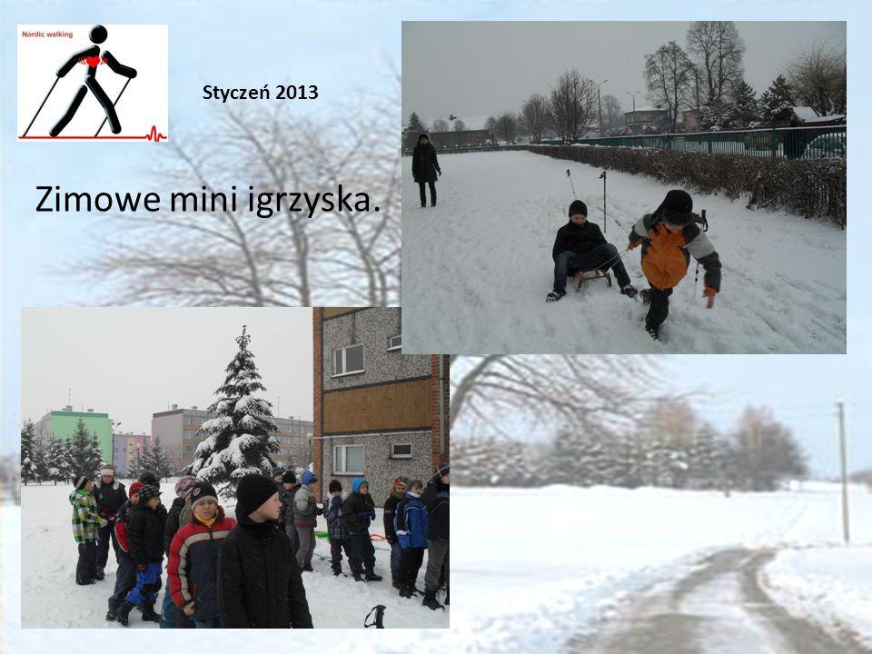 Zimowe mini igrzyska. Styczeń 2013