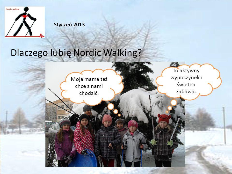 Dlaczego lubię Nordic Walking. Styczeń 2013 To aktywny wypoczynek i świetna zabawa.
