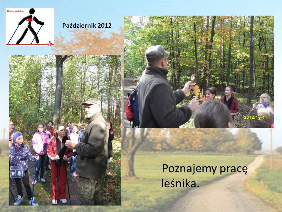 Poznajemy pracę leśnika. Październik 2012