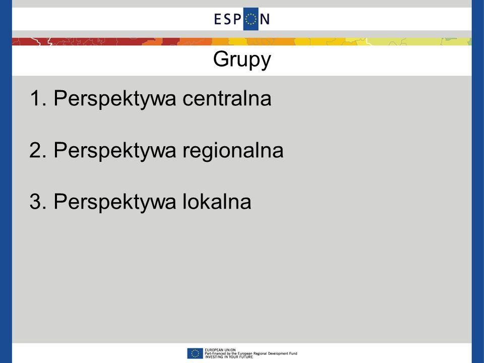 Grupy 1. Perspektywa centralna 2. Perspektywa regionalna 3. Perspektywa lokalna
