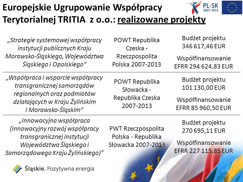 Europejskie Ugrupowanie Współpracy Terytorialnej TRITIA z o.o.: realizowane projekty Strategie systemowej współpracy instytucji publicznych Kraju Mora