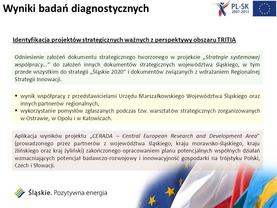 Wyniki badań diagnostycznych: Identyfikacja projektów strategicznych ważnych z perspektywy obszaru TRITIA Priorytet1.
