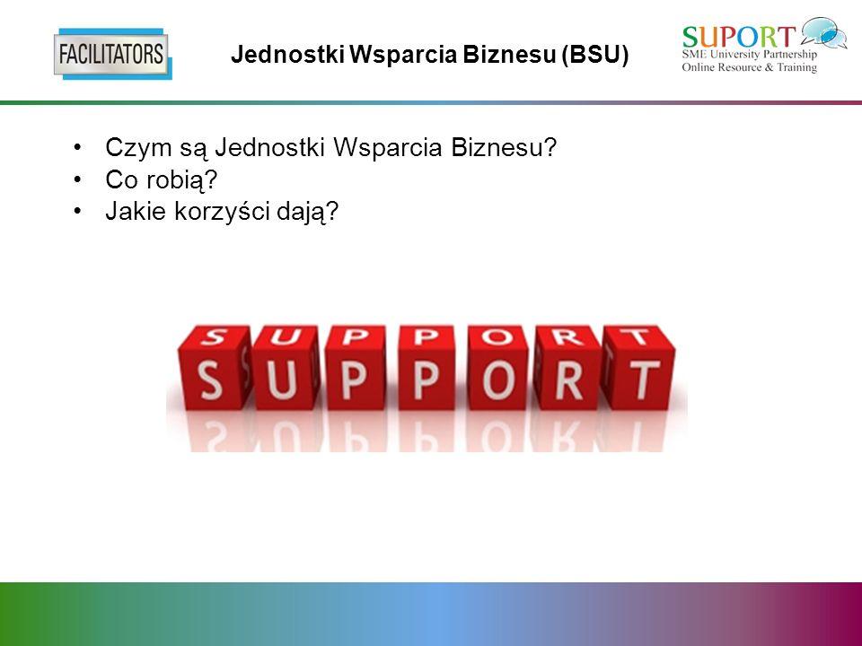 Jednostki Wsparcia Biznesu (BSU) Czym są Jednostki Wsparcia Biznesu? Co robią? Jakie korzyści dają?