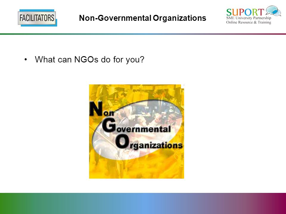 Non-Governmental Organizations What can NGOs do for you?