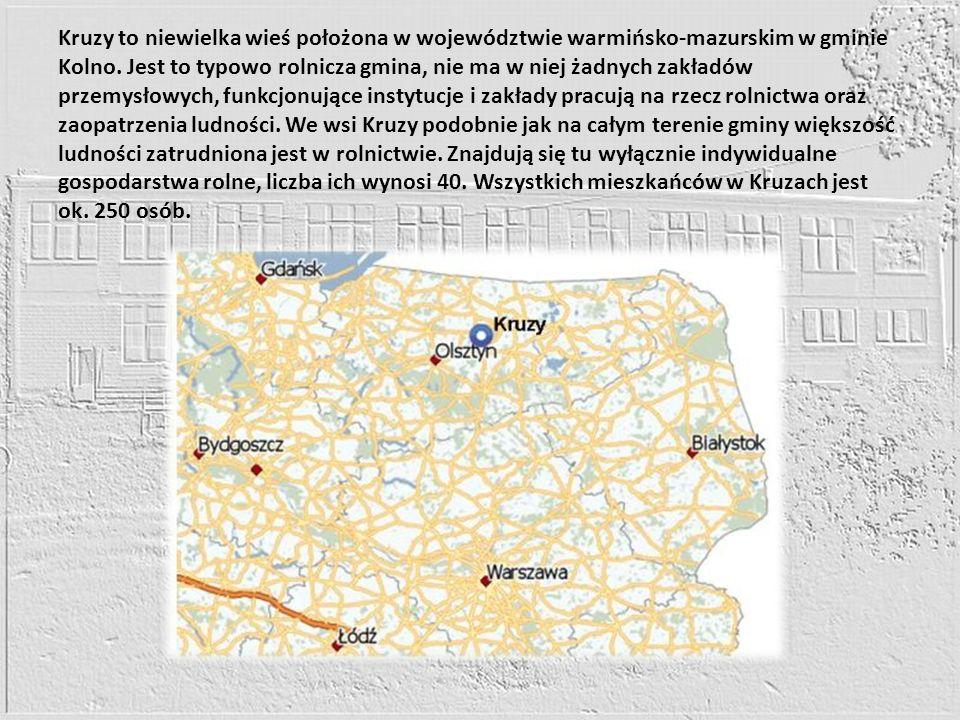 Kruzy to niewielka wieś położona w województwie warmińsko-mazurskim w gminie Kolno. Jest to typowo rolnicza gmina, nie ma w niej żadnych zakładów prze