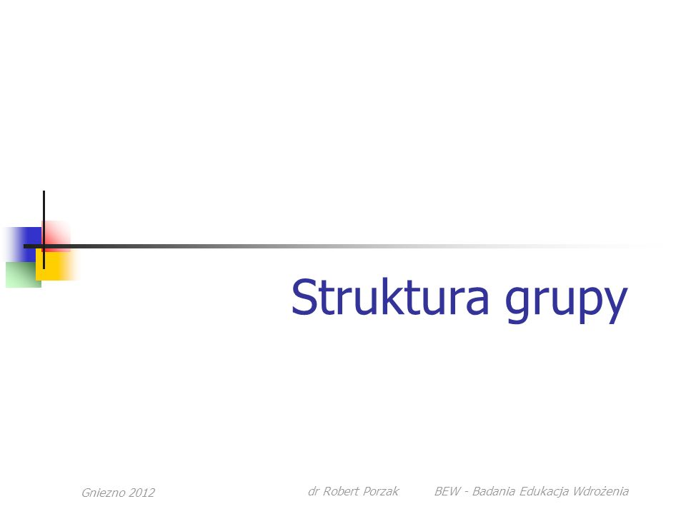 Gniezno 2012 dr Robert Porzak BEW - Badania Edukacja Wdrożenia Struktura grupy
