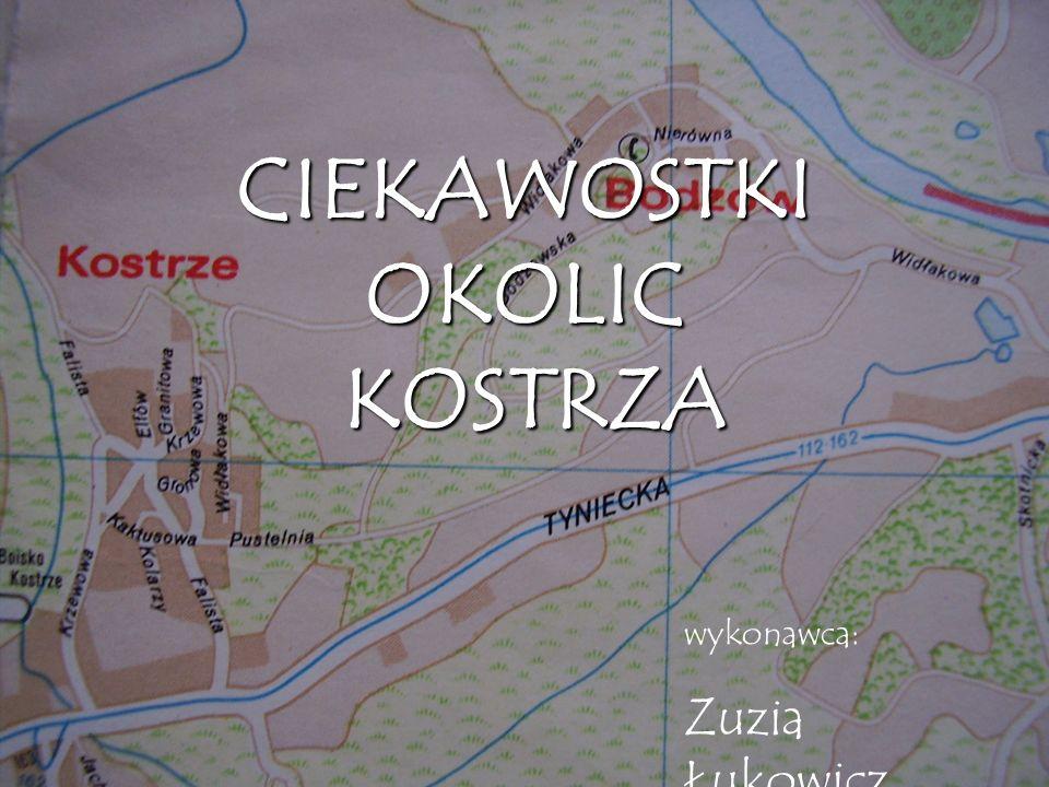 CIEKAWOSTKI OKOLIC KOSTRZA wykonawca: Zuzia Łukowicz