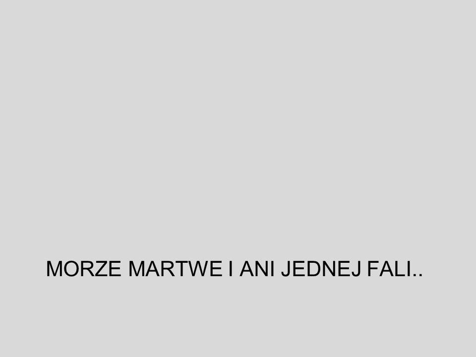 MORZE MARTWE I ANI JEDNEJ FALI..