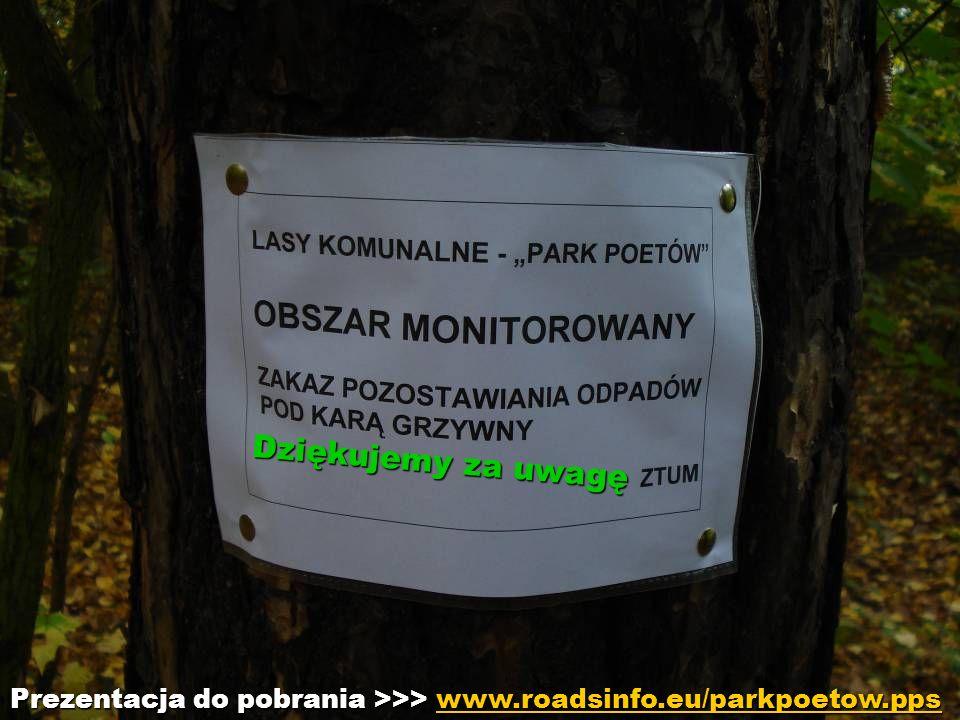 Dziękujemy za uwagę Dziękujemy za uwagę Prezentacja do pobrania >>> www.roadsinfo.eu/parkpoetow.pps www.roadsinfo.eu/parkpoetow.pps