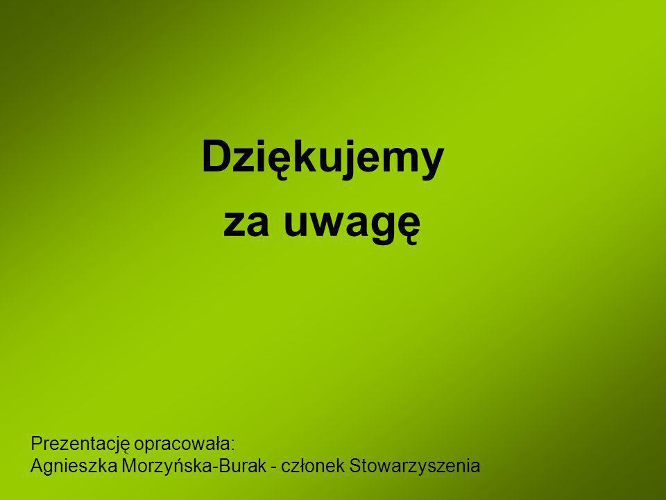 Dziękujemy za uwagę Prezentację opracowała: Agnieszka Morzyńska-Burak - członek Stowarzyszenia