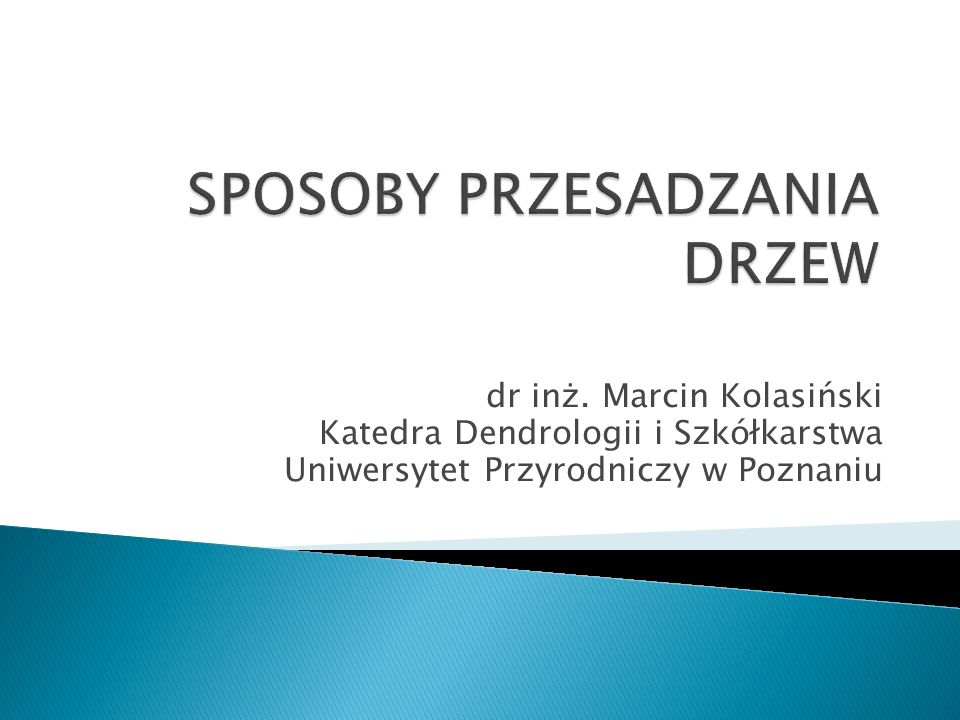 dr inż. Marcin Kolasiński Katedra Dendrologii i Szkółkarstwa Uniwersytet Przyrodniczy w Poznaniu
