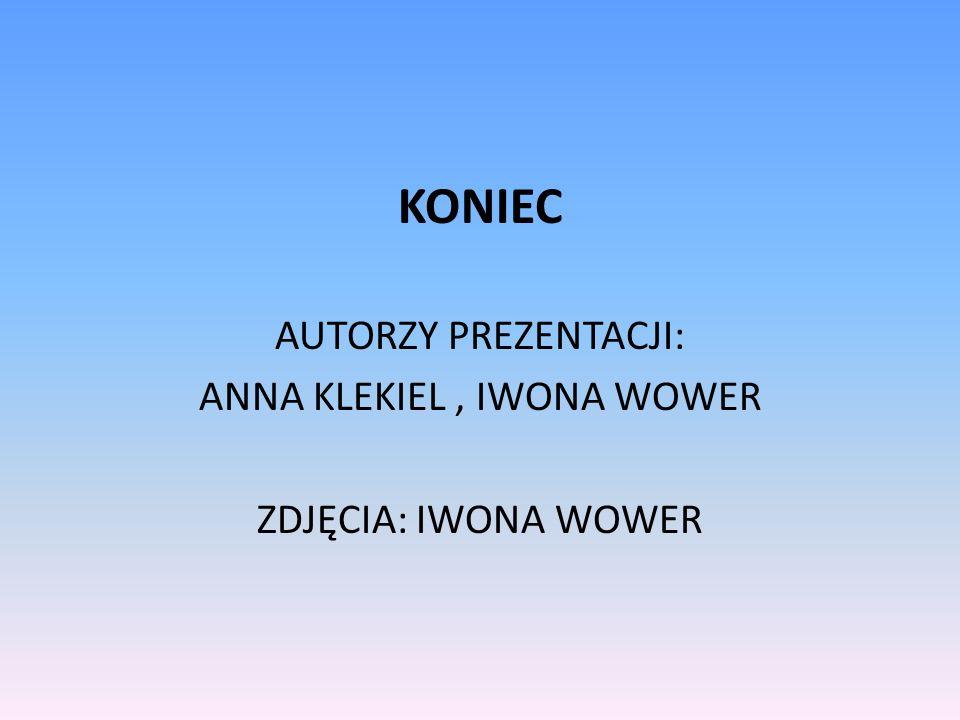 KONIEC AUTORZY PREZENTACJI: ANNA KLEKIEL, IWONA WOWER ZDJĘCIA: IWONA WOWER