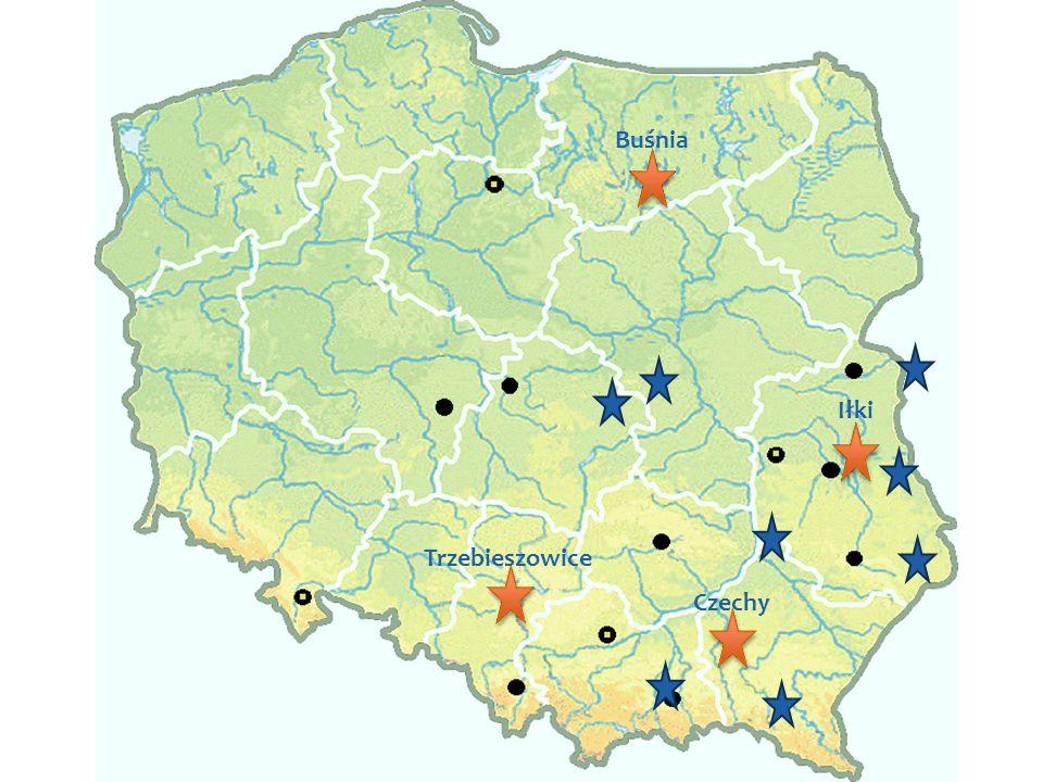 RESTOR Hydrowww.restor-hydro.eu28 Mapa z lokalizacjami Iłki Buśnia Trzebieszowice Czechy