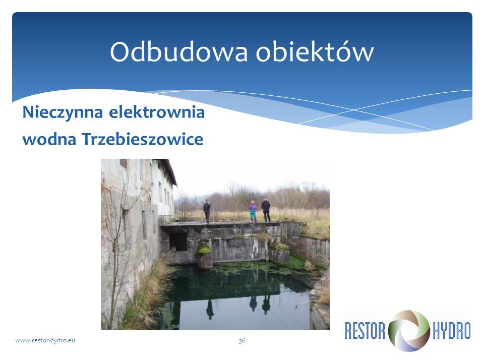 Nieczynna elektrownia wodna Trzebieszowice www.restor-hydro.eu36 Odbudowa obiektów