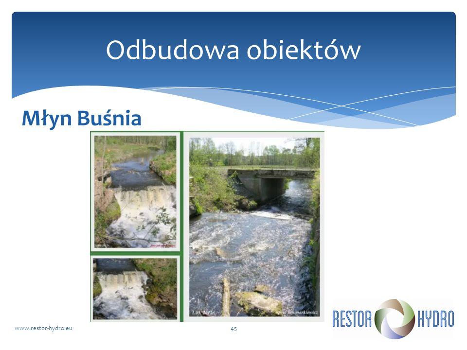 Młyn Buśnia www.restor-hydro.eu45 Odbudowa obiektów