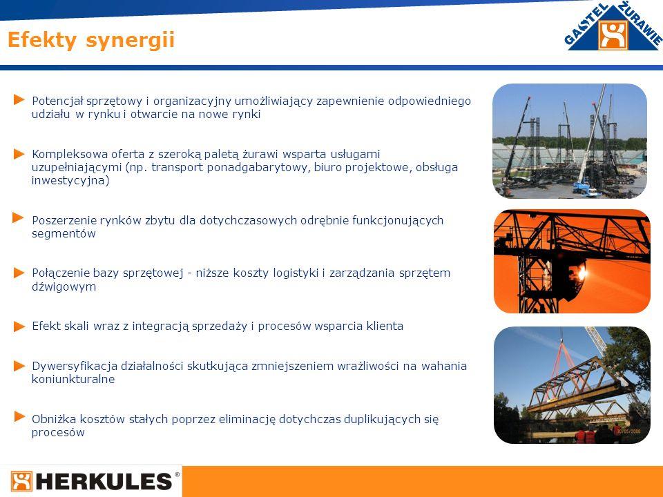 3 Potencjał sprzętowy i organizacyjny umożliwiający zapewnienie odpowiedniego udziału w rynku i otwarcie na nowe rynki Kompleksowa oferta z szeroką pa