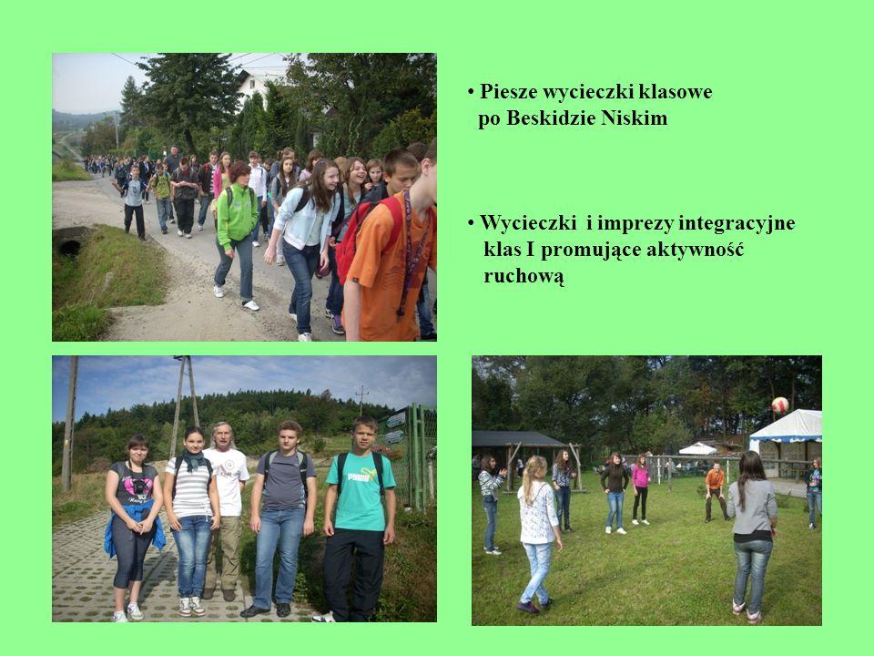 Piesze wycieczki klasowe po Beskidzie Niskim Wycieczki i imprezy integracyjne klas I promujące aktywność ruchową