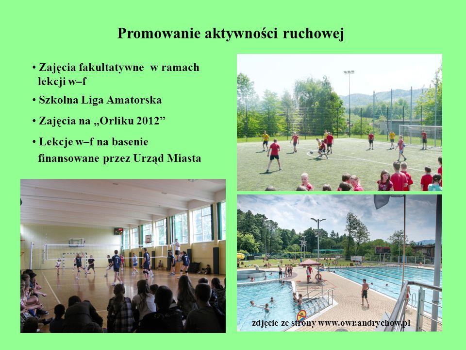 Promowanie aktywności ruchowej Zajęcia fakultatywne w ramach lekcji w–f Szkolna Liga Amatorska Zajęcia na Orliku 2012 Lekcje w–f na basenie finansowan