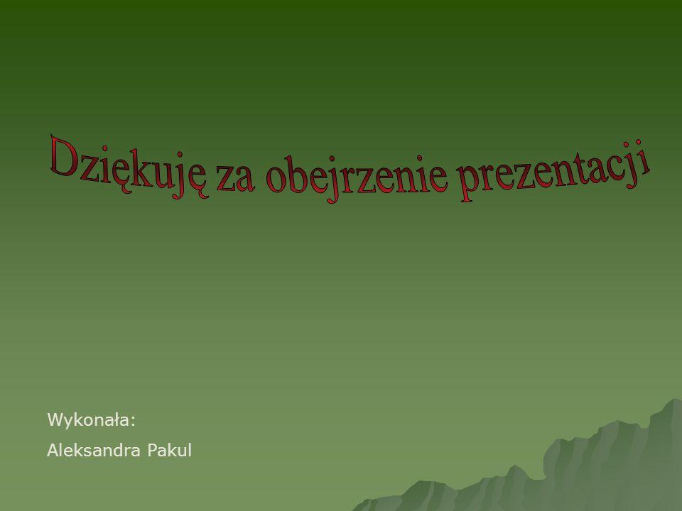 Wykonała: Aleksandra Pakul